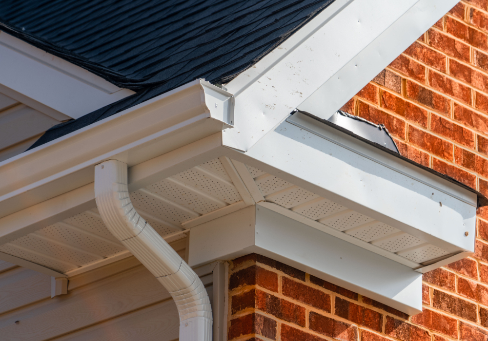 professional fascia soffit cleaning company